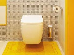 Дизайн туалета маленького размера: фото и советы