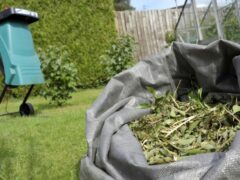 Садовый измельчитель своими руками: как создать функциональную конструкцию