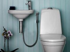 Смеситель с гигиеническим душем: лучший способ сделать санузел комфортным